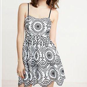 Express eyelet ruffled skirt dress
